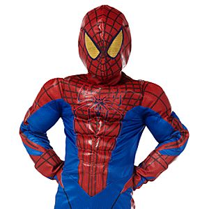 Deluxe The Amazing Spider-Man Costume for Boys