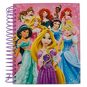 Disney Princess Stencil Activity Set