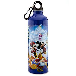 Aluminum Disney Store 25th Anniversary World of Disney Water Bottle