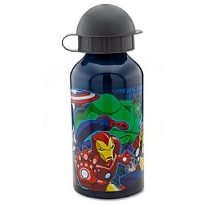 Aluminum The Avengers Water Bottle -- Small