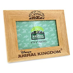 Disneys Animal Kingdom Photo Frame - 4 x 6